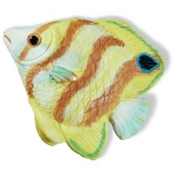 SIRO H025-67 Caribe Yellow & Orange Stripe Fish KNOB