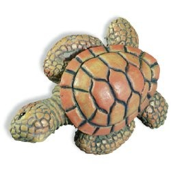 SIRO H022-67 Caribe Turtle KNOB