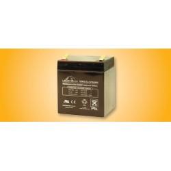 Securitron B-12-5 / B-24-5 Lead Acid Battery Power Transfer