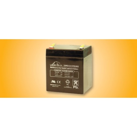 Securitron B-12-5 / B-24-5 Lead Acid Battery Power Transfer
