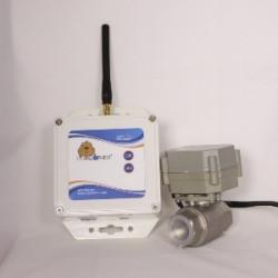 LGWVC9-0.jpg