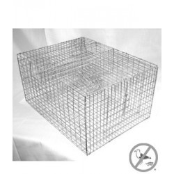 Bird B Gone Sparrow Trap with Two Chambers