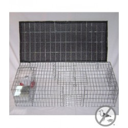 Bird B Gone Pigeon Trap with Shade, Food & Water Containers