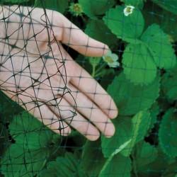 Bird B Gone Garden Bird Netting 3/4 in. Mesh
