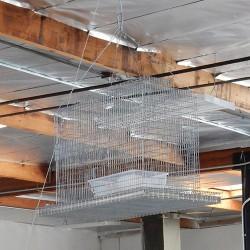 Bird B Gone Sparrow Sky Trap