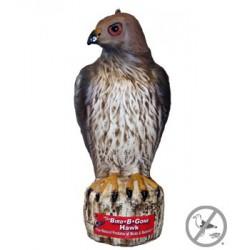 Bird B Gone Red Tail Hawk Decoy