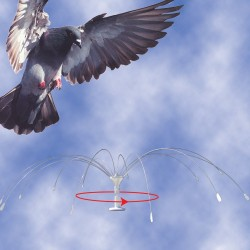 Bird B Gone Bird Spider 360 Spinning Bird Deterrent