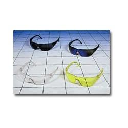 Snapper Safety Glasses